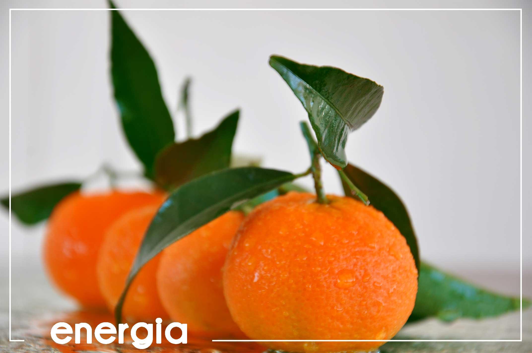 header-mandarino