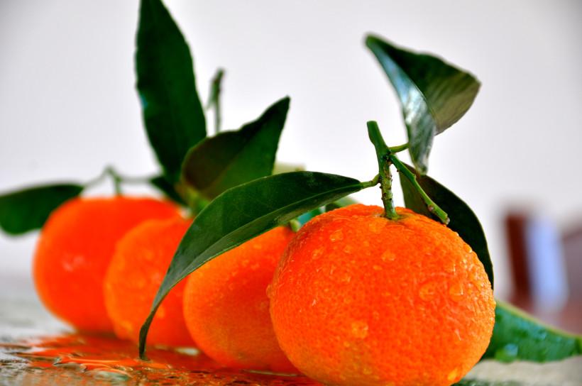 Clementine_2